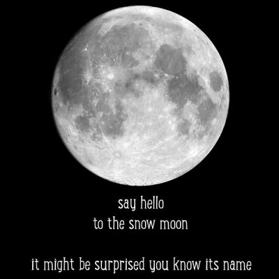 Say Hello to the Moon