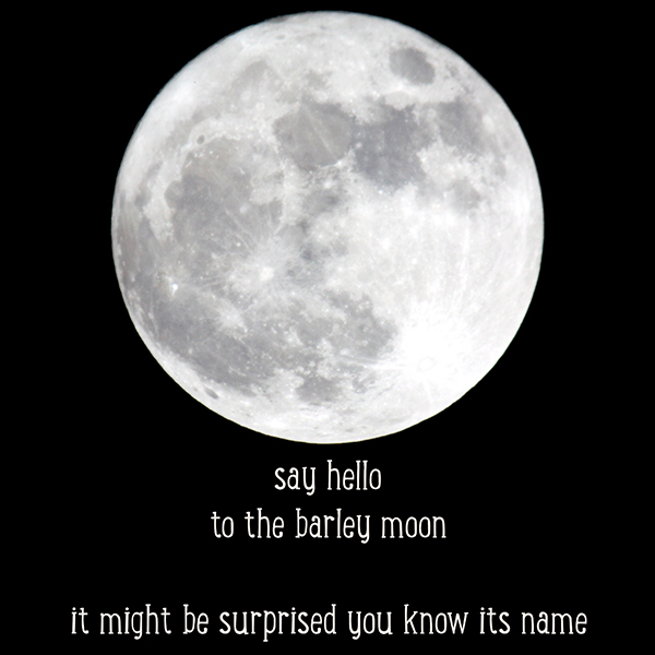 Eternal Clock: Barley Moon
