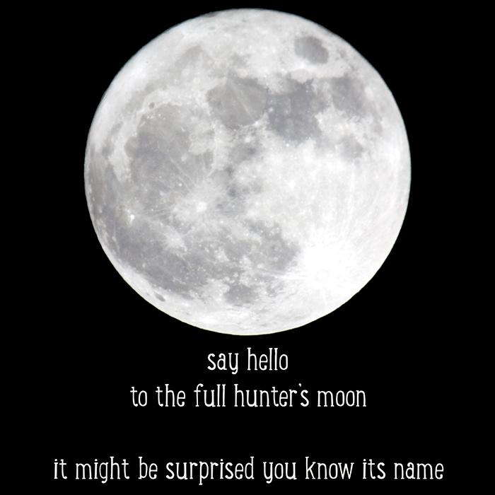 Eternal Clock: Full Hunter's Moon